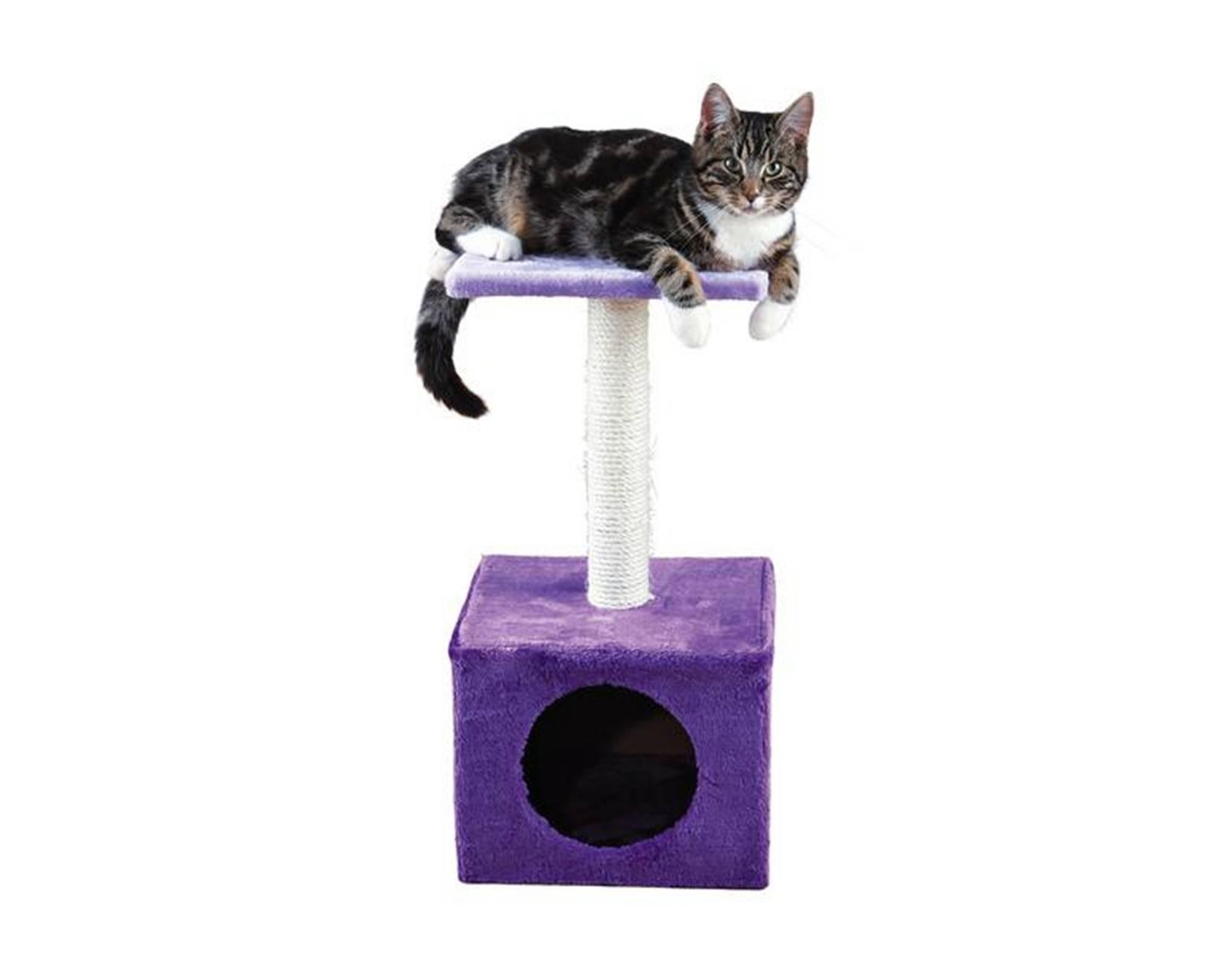 Как выбрать когтеточка для кошек